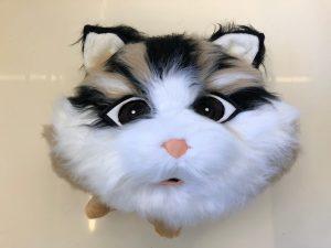 Maskottchen Katzen Kostüm 134b Walking Act Promotin Plüsch Lauffigur