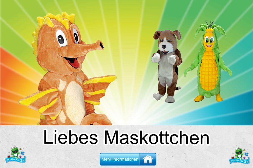 Liebes-Kostueme-Maskottchen-Karneval-Produktion-Firma-Bau